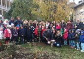 Giornata dell'Albero – il Presidente Affronti e l'Assessore Panigazzi nelle scuole a piantare gli alberi donati dal comune
